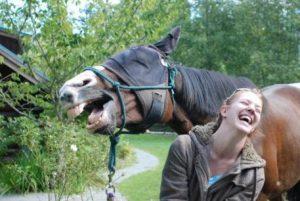 Ржет и лошадь