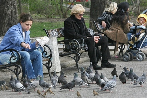 bulgarian feeding the birds