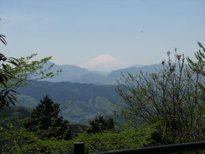 The view on mountain Fuji from the top of the mountain Takao in summer.